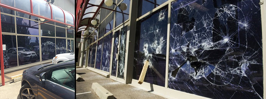 Business Panel Door Glass Replacement Canberra & Business Shop-fronts \u0026 Full Panel Doors Canberra   Discount Glass ...